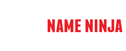 Name Ninja > Domain Name Acquisition